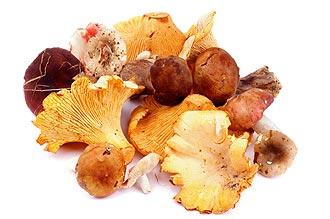 Купить лесные грибы