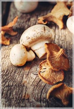 Купить грибы замороженные